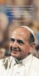 """25 Immagini Paolo VI """"L'uomo prova la gioia…"""""""