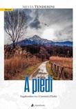 A piedi. Vagabondare tra i cammini d'Italia Libro di  Silvia Tenderini