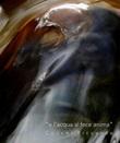 «E l'acqua si fece anima» Libro di  Riccardo Cocchi