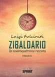 Zibaldario Libro di  Luigi Fulciniti