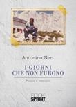 I giorni che non furono Libro di  Antonino Neri
