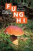 Funghi. Specie più diffuse, funghi commestibili e velenosi, classificazione, riconoscimento Ebook di  Luigi Fenaroli