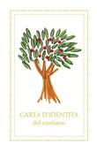 10 Biglietti Carta d'identità del cristiano Cartoleria