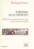 Tornare alla crescita. Perché l'economia italiana è in crisi e cosa fare per rifondarla Libro di  Pierluigi Ciocca