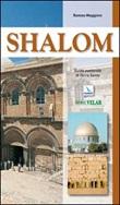 Shalom. Guida pastorale di Terra Santa Libro di  Romeo Maggioni