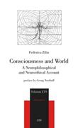 Consciousness and world. A neurophilosophical and neuroethical account Libro di  Federico Zilio