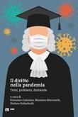 Il diritto nella pandemia. Temi, problemi, domande Libro di