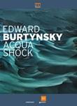 Edward Burtynsky. Acqua shock. Catalogo della mostra (Milano, 3 settembre-1 novembre 2015). Ediz. illustrata Libro di