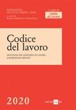 Codice del lavoro Ebook di