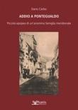 Addio a Pontegualdo. Piccola epopea di un'anonima famiglia meridionale Libro di  Dario Cerbo