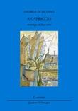 A capriccio (monologo in frasi-versi) Libro di  Andrea Di Silvana