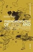 Phenomenology of wind and atmosphere Libro di  Ogawa Tadashi