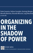 Organizing in the shadow of power Libro di