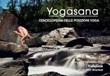 Yogasana. L'enciclopedia delle posizioni yoga Ebook di Yogrishi Vishvketu