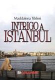 Intrigo a Istanbul Libro di  Maddalena Tiblissi