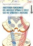 Anatomia funzionale del midollo spinale e delle sue vie sensitive e motorie Ebook di  Francesco Fornai, Michela Ferrucci