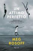 Un attimo perfetto Ebook di  Meg Rosoff