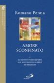L'amore sconfinato Libro di  Romano Penna