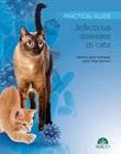 Infectious diseases in cats. Practical guide Ebook di  Juanjo Vega Guerrero, Valentina Aybar González