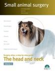 Small animal surgery. The head and neck Ebook di  José Rodríguez, Jorge Llinás, Roberto Bussadori