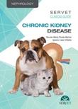 Servet clinical guides: chronic kidney disease Ebook di  Carmen María Pineda Martos, Ignacio López Villalba, María Luisa Suárez Rey