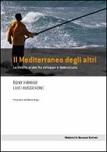 Il Mediterraneo degli altri. Le rivolte arabe fra sviluppo e democrazia