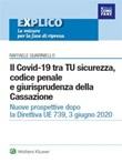Il Covid-19 tra TU sicurezza, codice penale e giurisprudenza della Cassazione Ebook di  Raffaele Guariniello